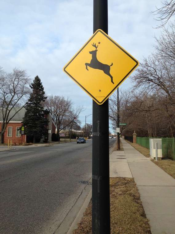 A deer crossing sign next to a city street.